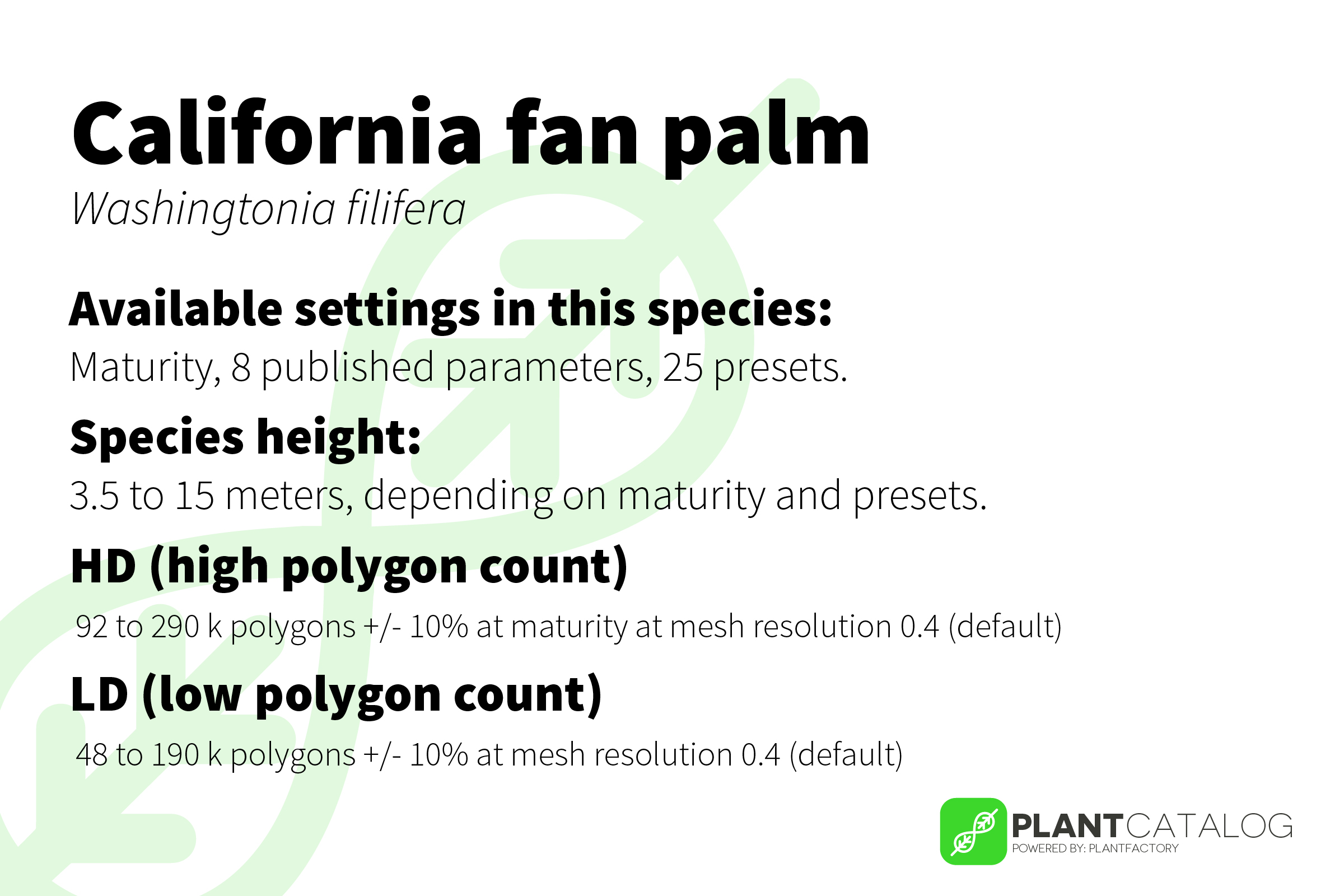 California fan palm - Washingtonia filifera - 3D model specifications