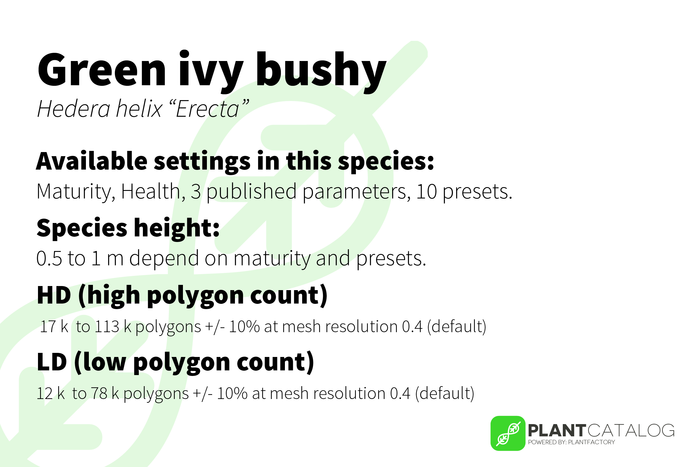 Green ivy bushy - Hedera helix 'Erecta' - 3D model specifications