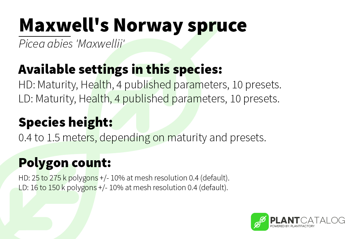 Maxwell's Norway spruce - Picea abies 'Maxwellii' - 3D model specifications