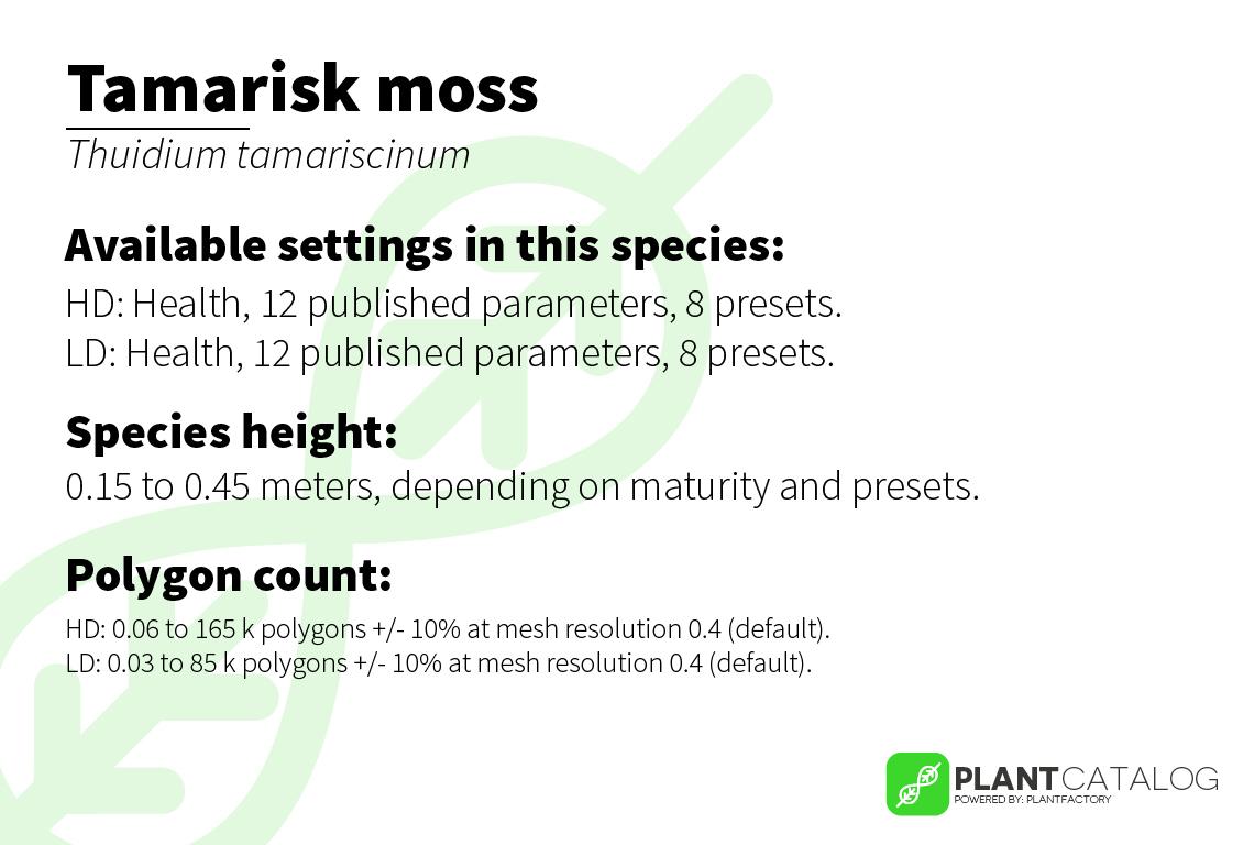 Tamarisk moss - Thuidium tamariscinum - 3D model specifications