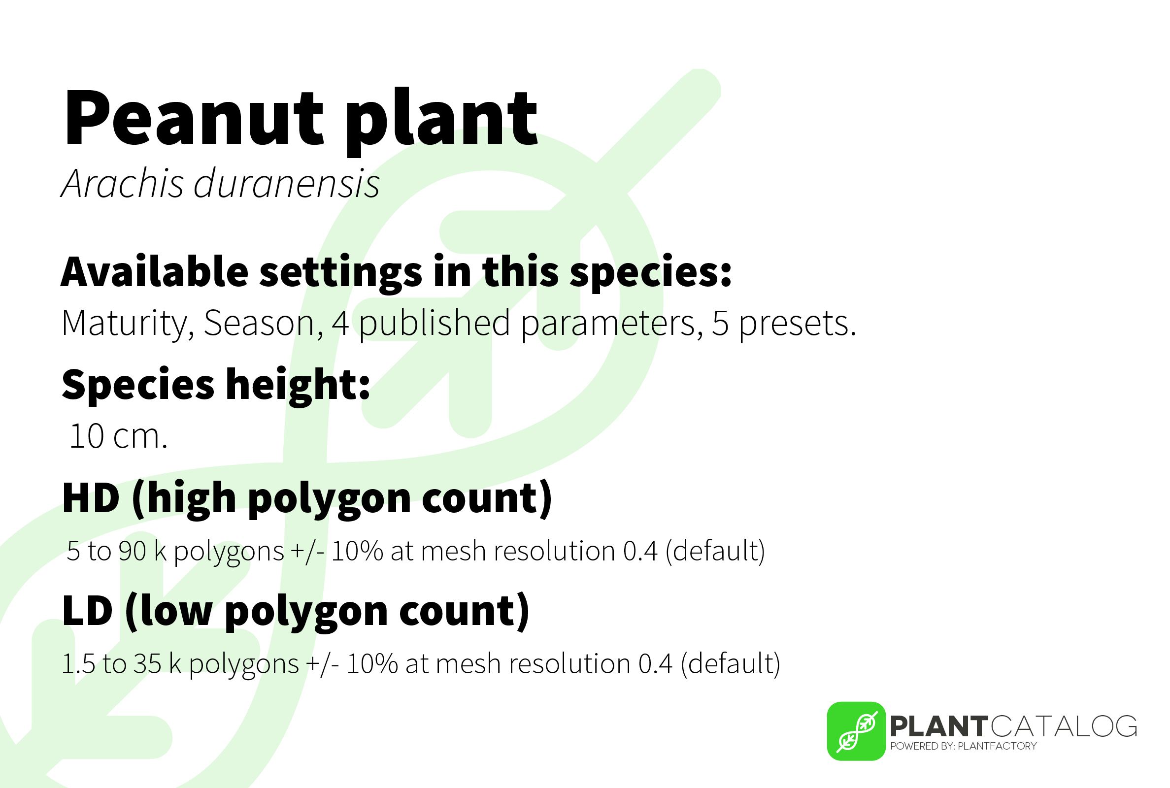 Peanut plant - Arachis duranensis - 3D model specifications