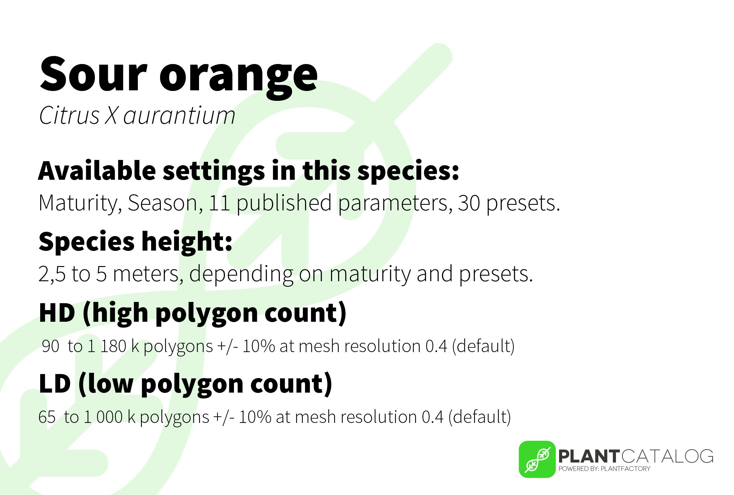 Sour orange
