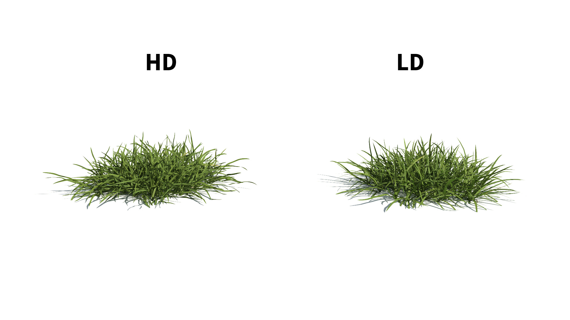 3D model of the Generic grass and lawn engine Generic grass lawn included versions