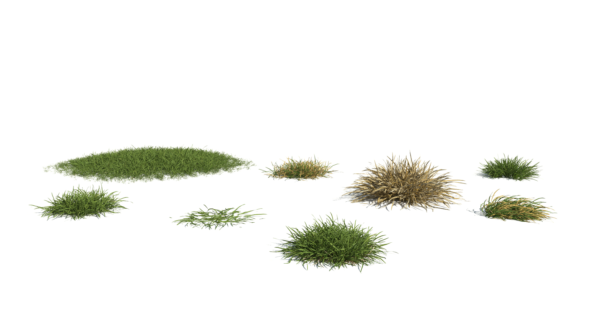 3D model of the Generic grass and lawn engine Generic grass lawn published parameters