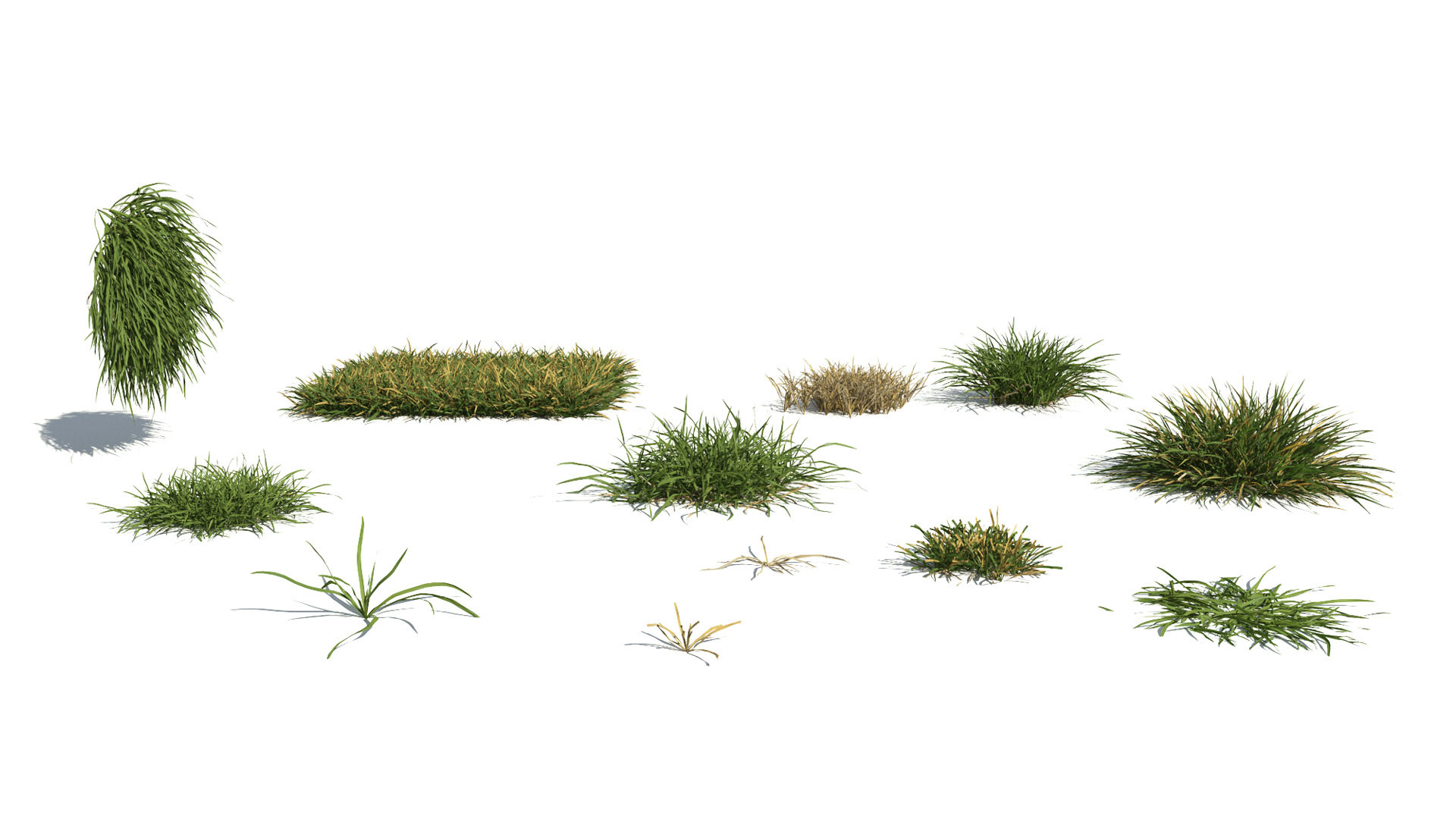 3D model of the Generic grass and lawn engine Generic grass lawn different presets