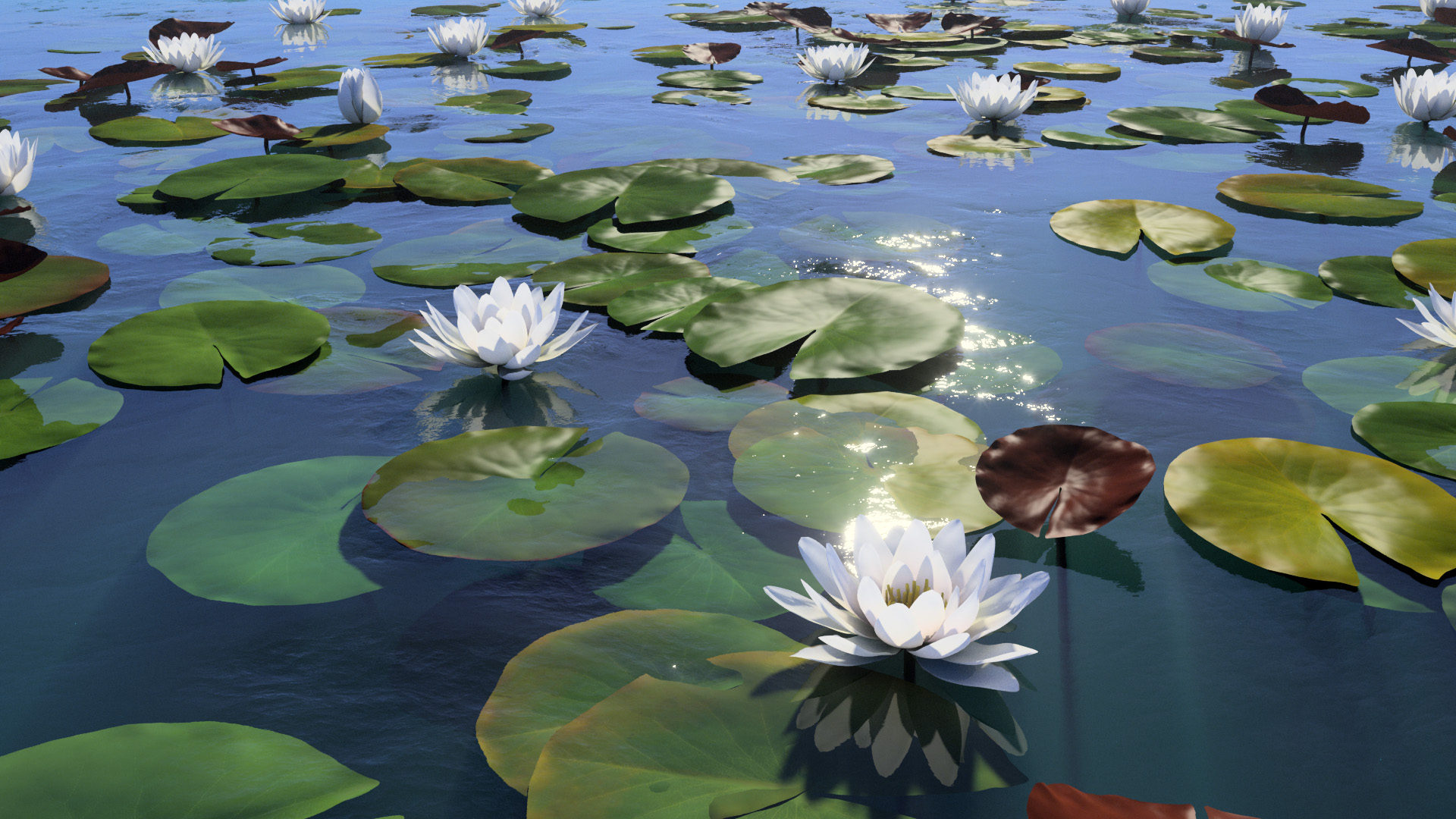 3D model of the White water lily Nymphaea alba
